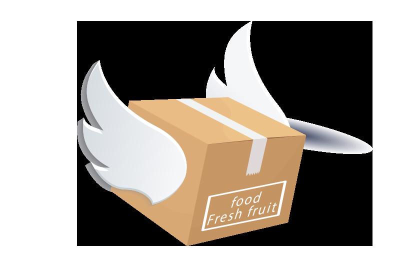 Box flight aircraft wing. Flies clipart carton