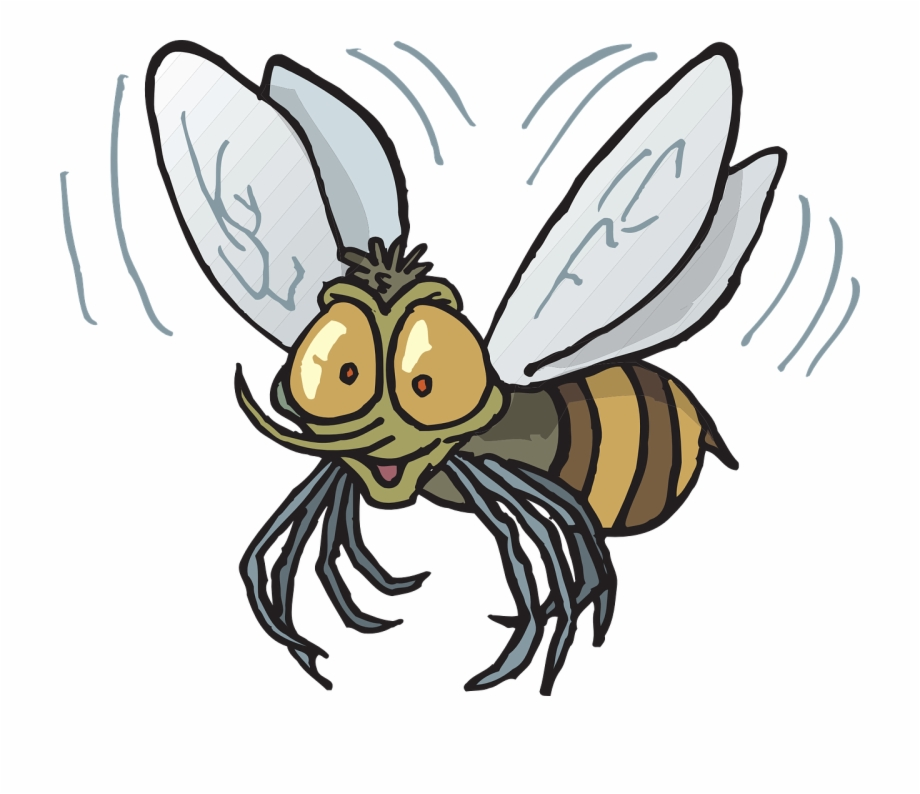 Bee flying insect buzzing. Flies clipart carton