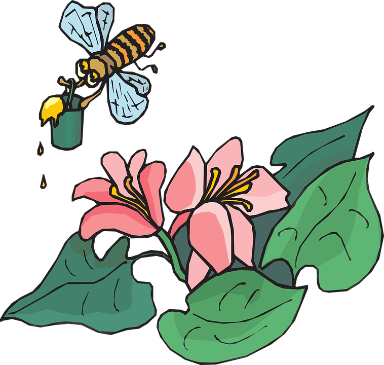 Flower fly insect clipground. Insects clipart angry