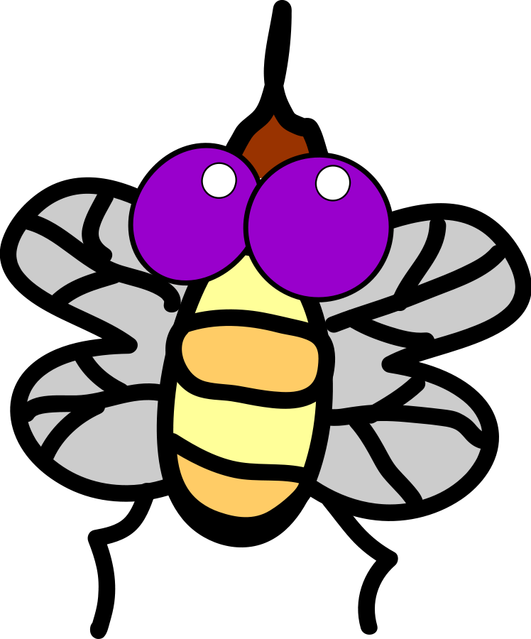 collection of cartoon. Insect clipart fly