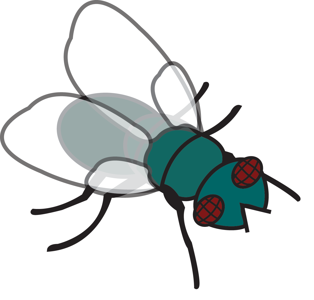 Flies clipart flew.  collection of fly