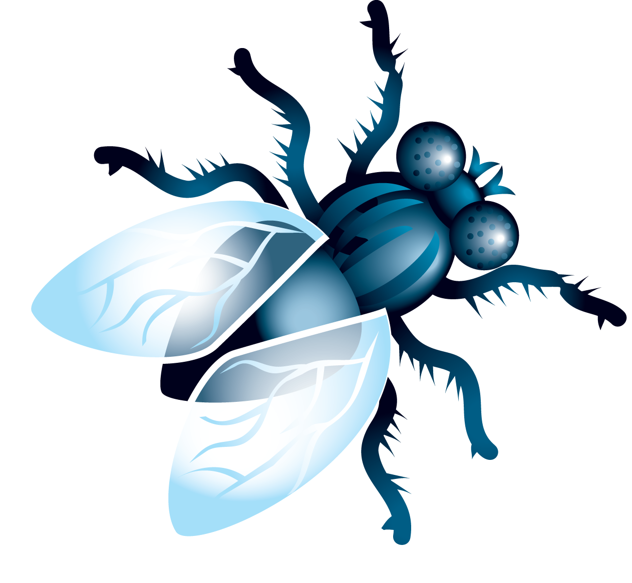 Flies harmful free on. Fly clipart insect