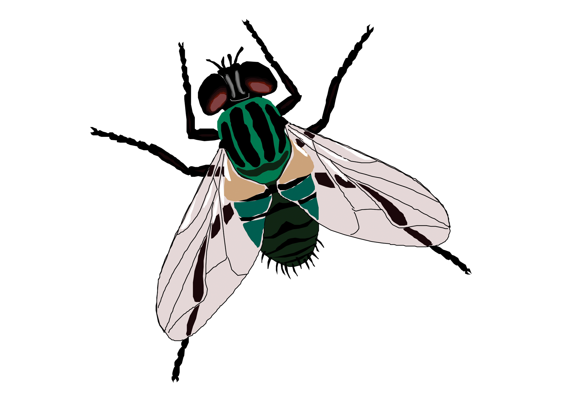 Flies clipart house fly. Sticker toilet clip art