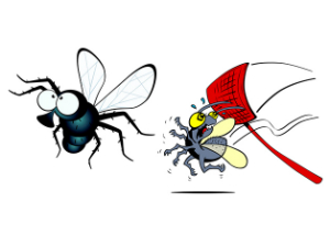 How to get rid. Flies clipart nuisance