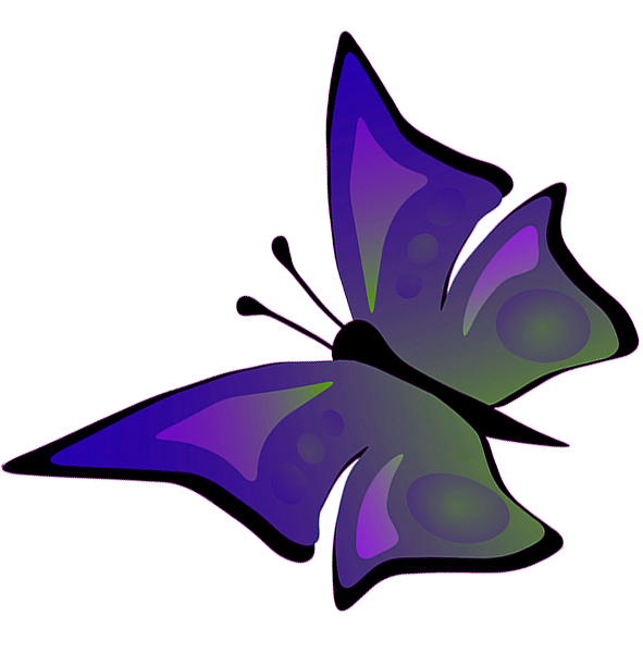 Butterfly flying drawing of. Fly clipart purple