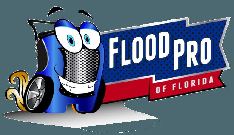 Flood clipart damp. Water damage tampa restoration