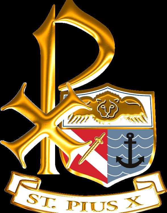 St pius x catholic. Flood clipart flood victim