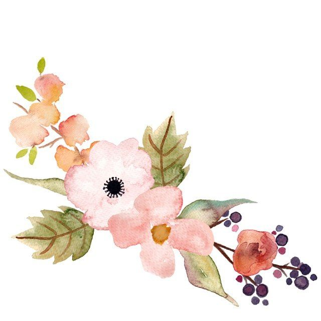 Floral clipart. Beautiful hand painted clip