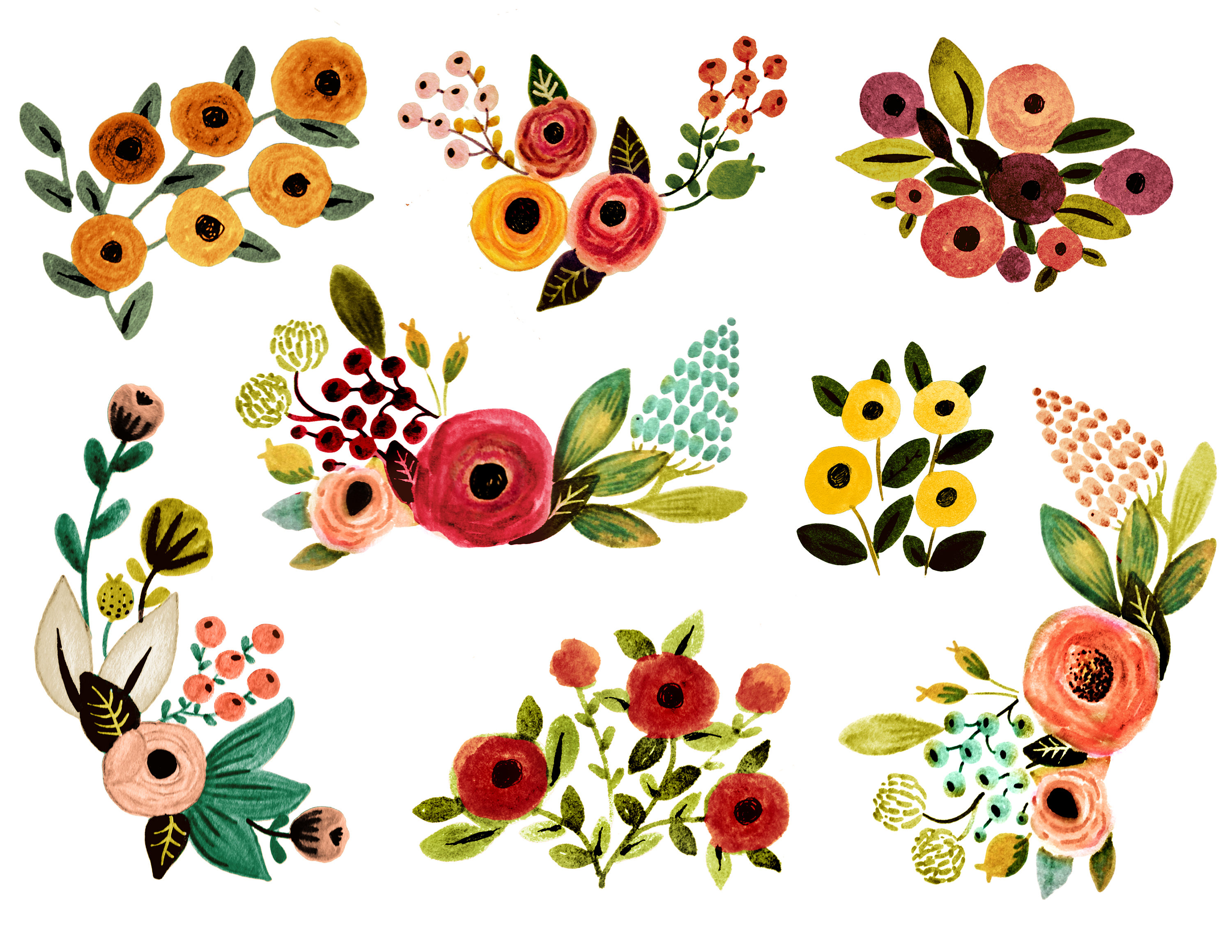 Watercolor fall florals . Floral clipart
