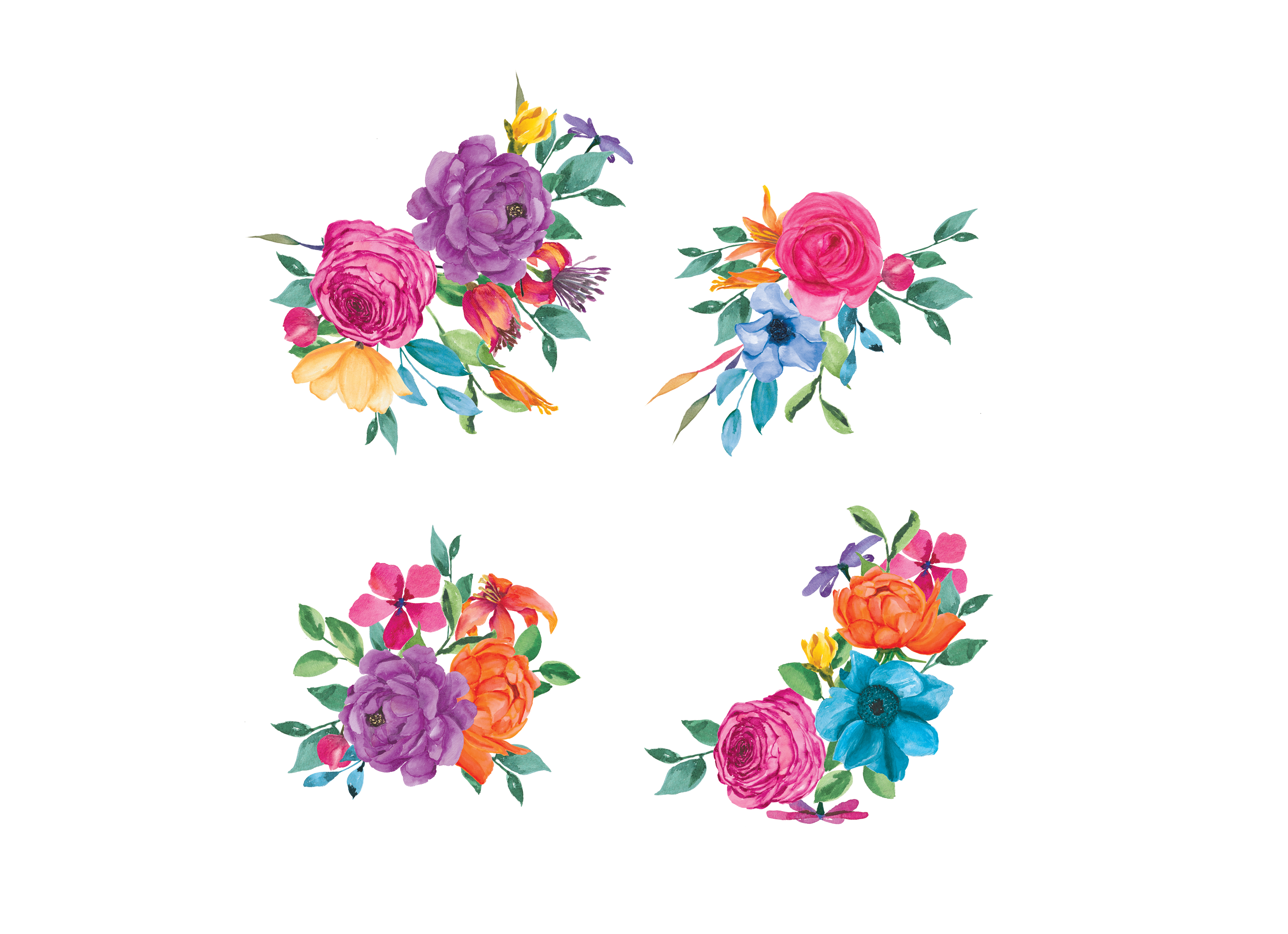 Floral clipart. Colorful watercolor hand design