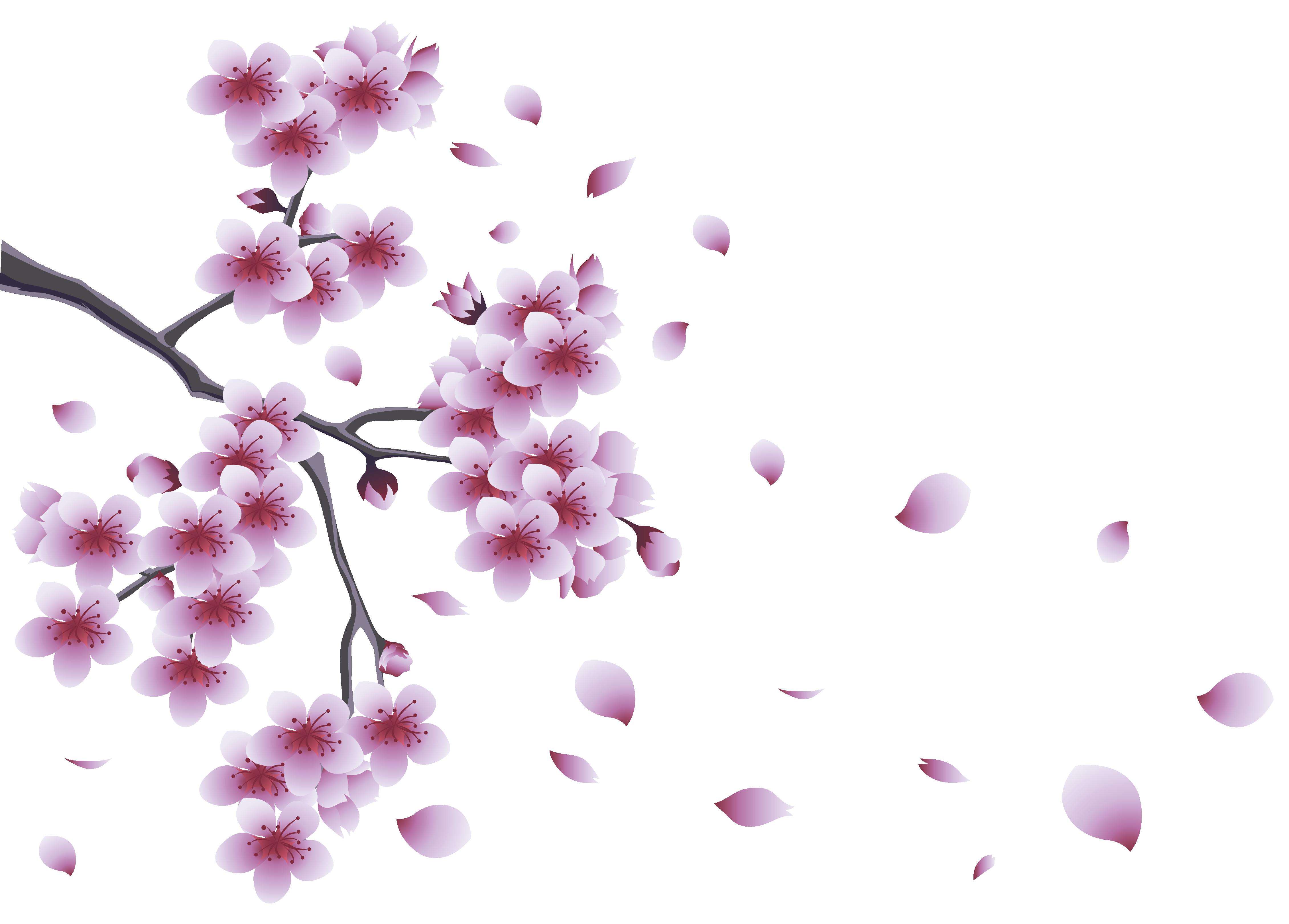 Floral clipart branch. Flower spring clip art