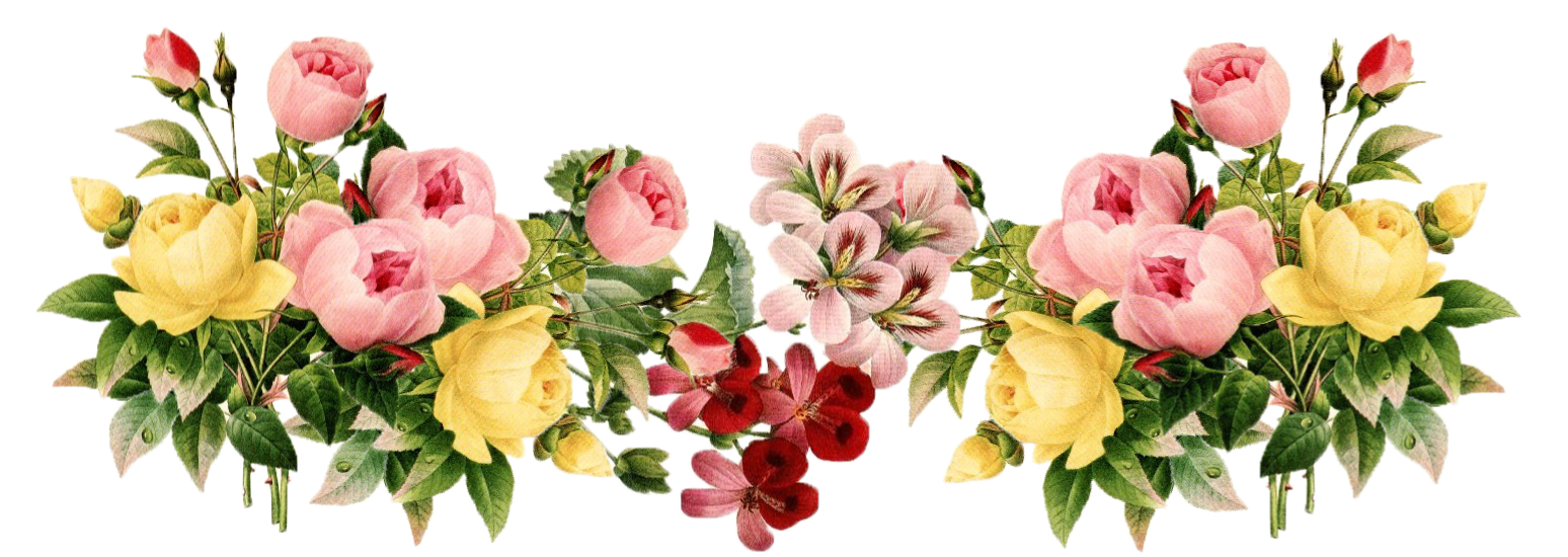 Png flower. Transparent pictures free icons