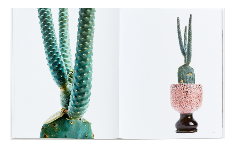 Floral clipart cactus. Grafted august editions and