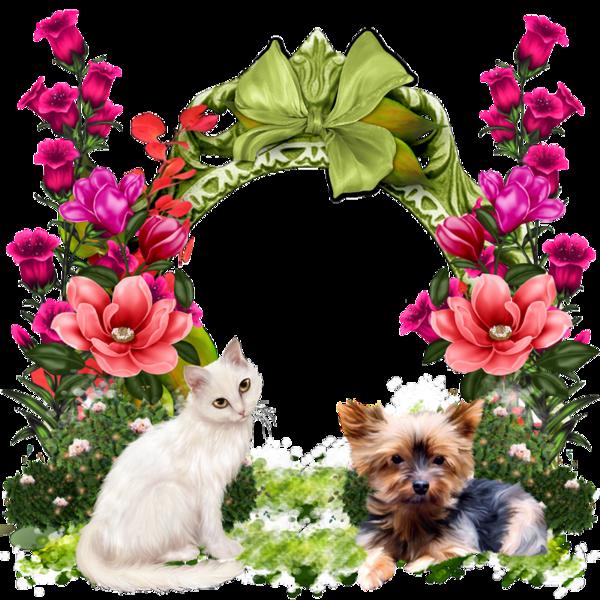 Floral clipart cat. Cadres frame rahmen quadro