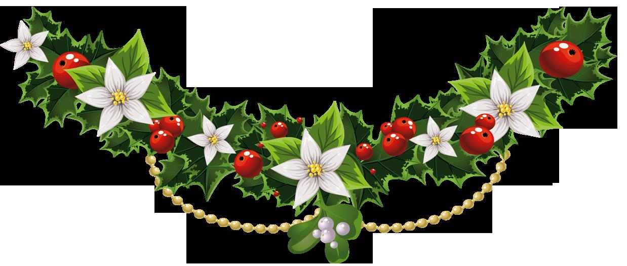 Mistletoe common holly clip. Floral clipart christmas