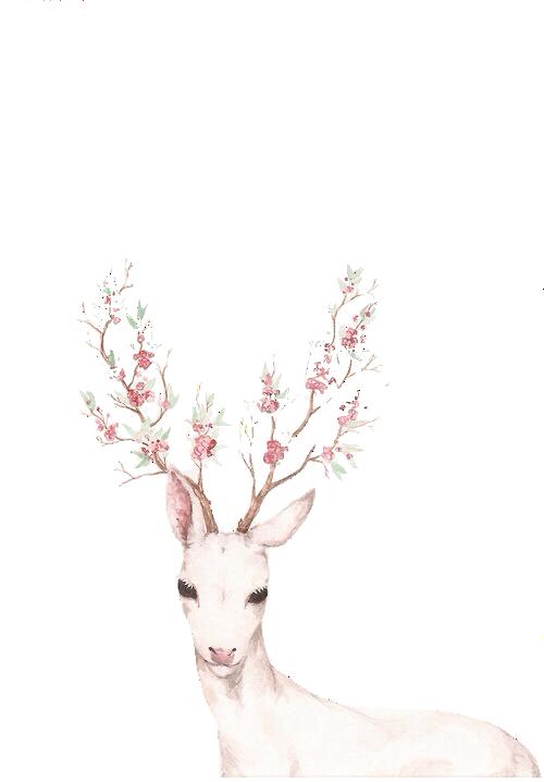 Let me tell you. Floral clipart deer antler