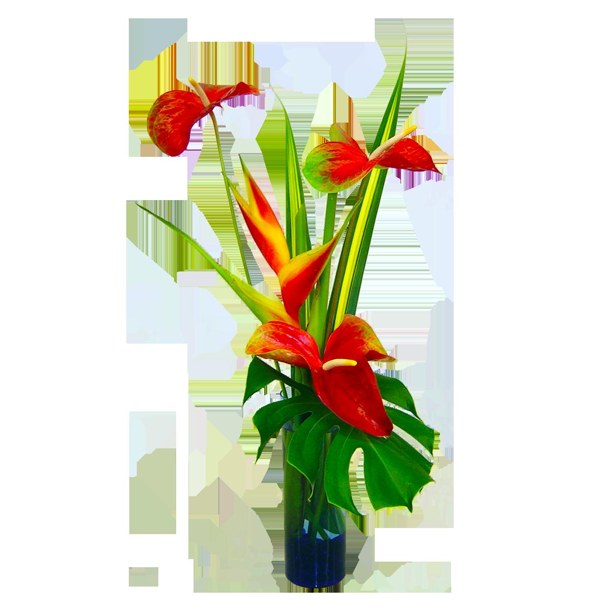 Hawaii flower hawaiin
