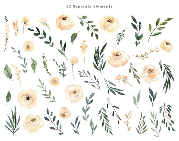 Watercolor beige cream light. Floral clipart floral print