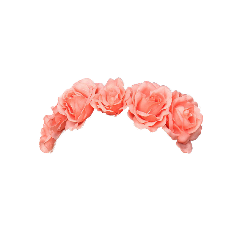 Transparent pictures free icons. Tumblr flower crown png