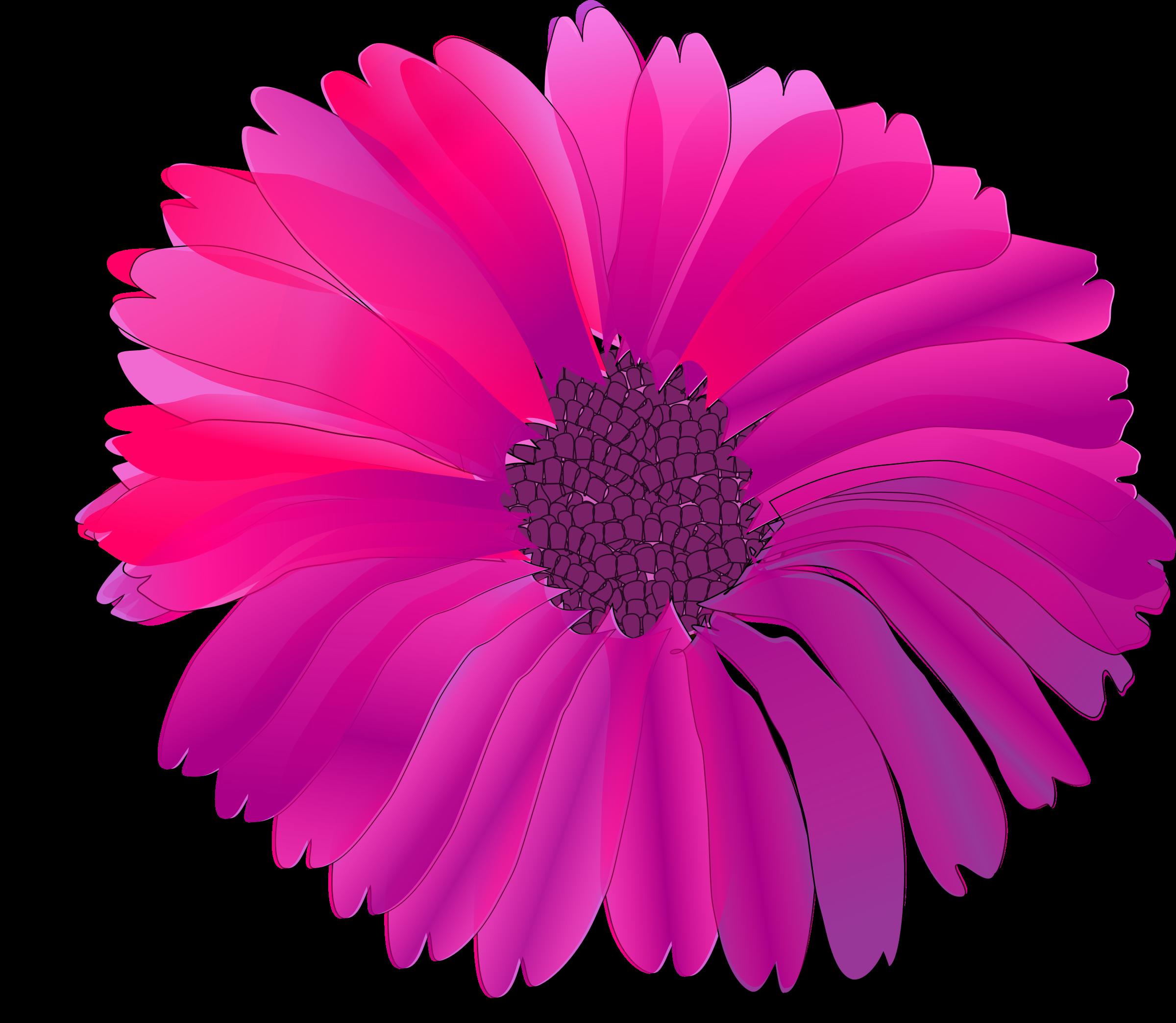 Floral clipart fuschia. Flowers png transparent images