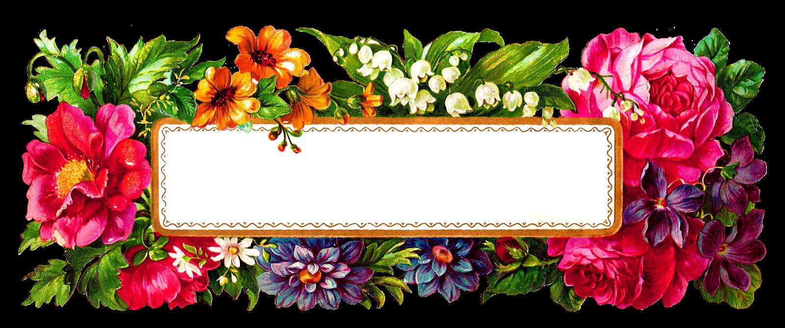 Antique images february flower. Label clipart digital frame