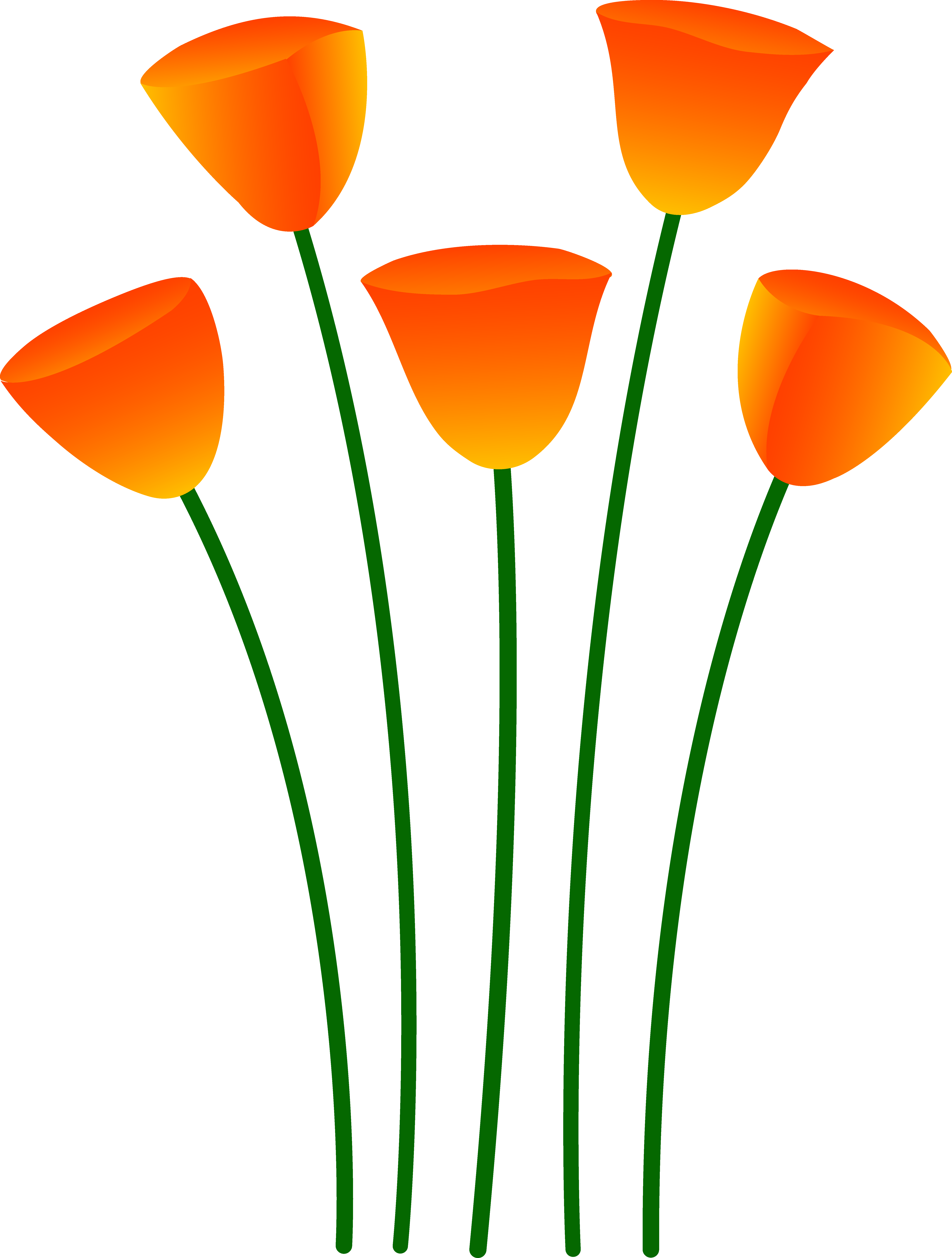 Poppy clipart 5 flower. Orange apple free collection