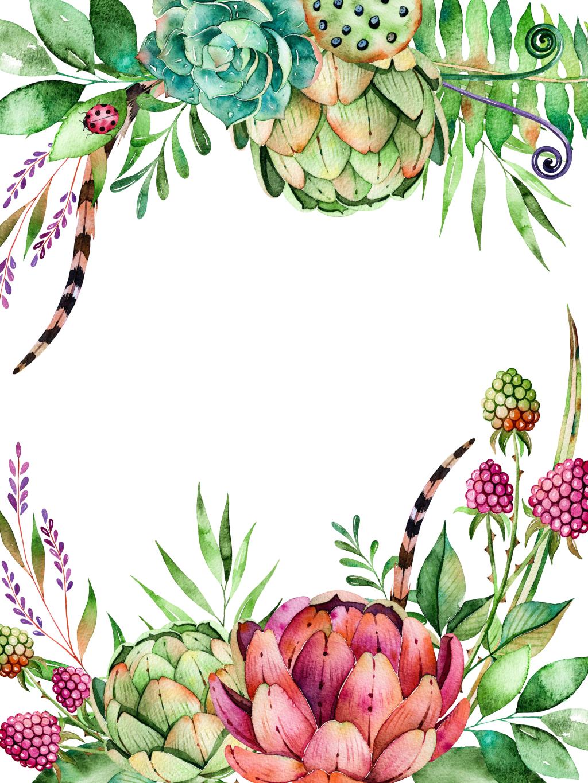 Floral clipart succulent. Plant flower watercolor painting