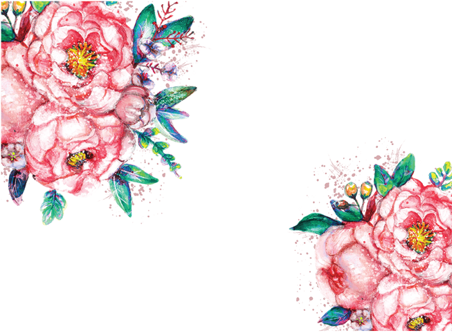 Floral clipart succulent. Inkess red watercolor flower