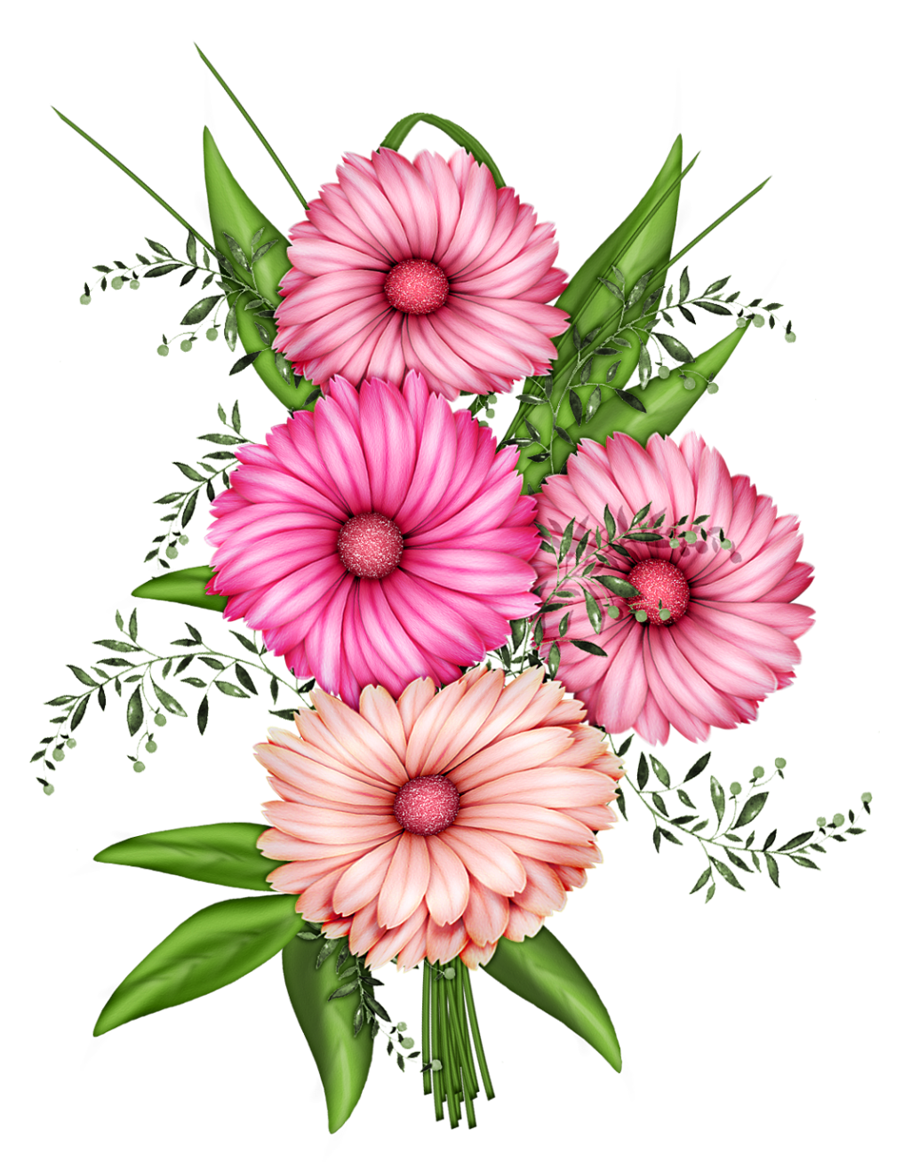 collection of transparent. Floral clipart translucent