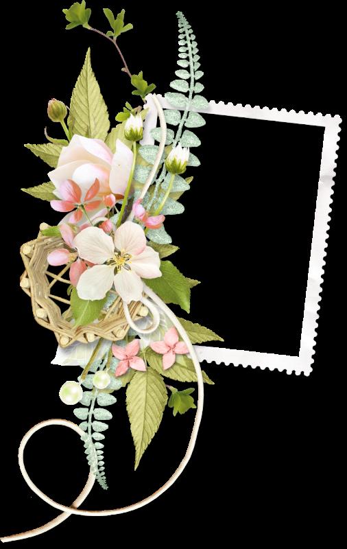 Hebergeur d image frames. Floral clipart trim