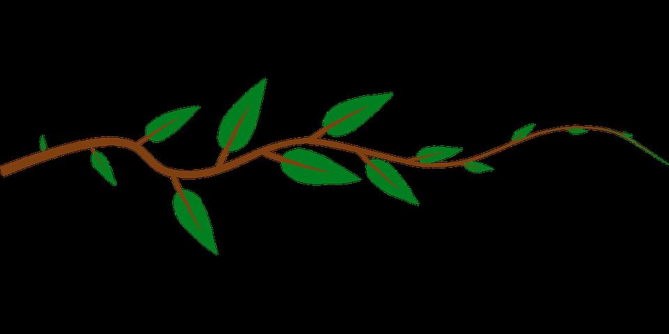 Strawberries clipart vine. Free horizontal vector graphics