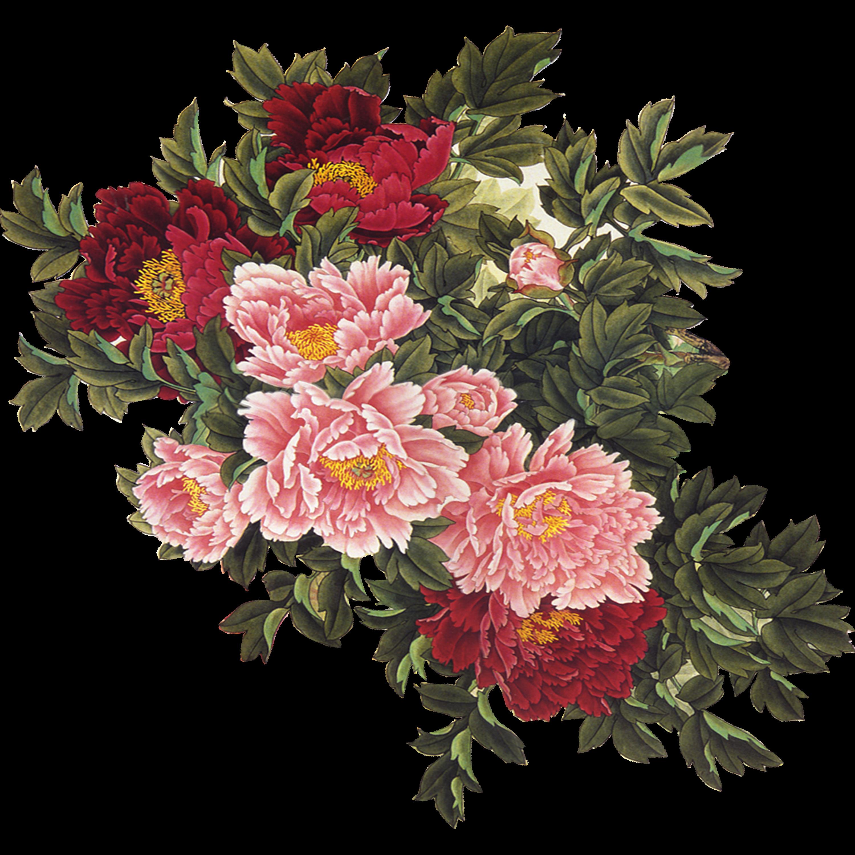 Floral clipart vintage flower. Uc ub b clip