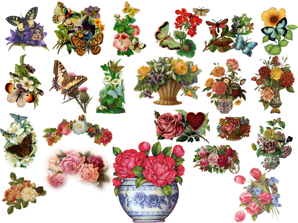 Floral clipart vintage flower. Flowers by hasiyne on