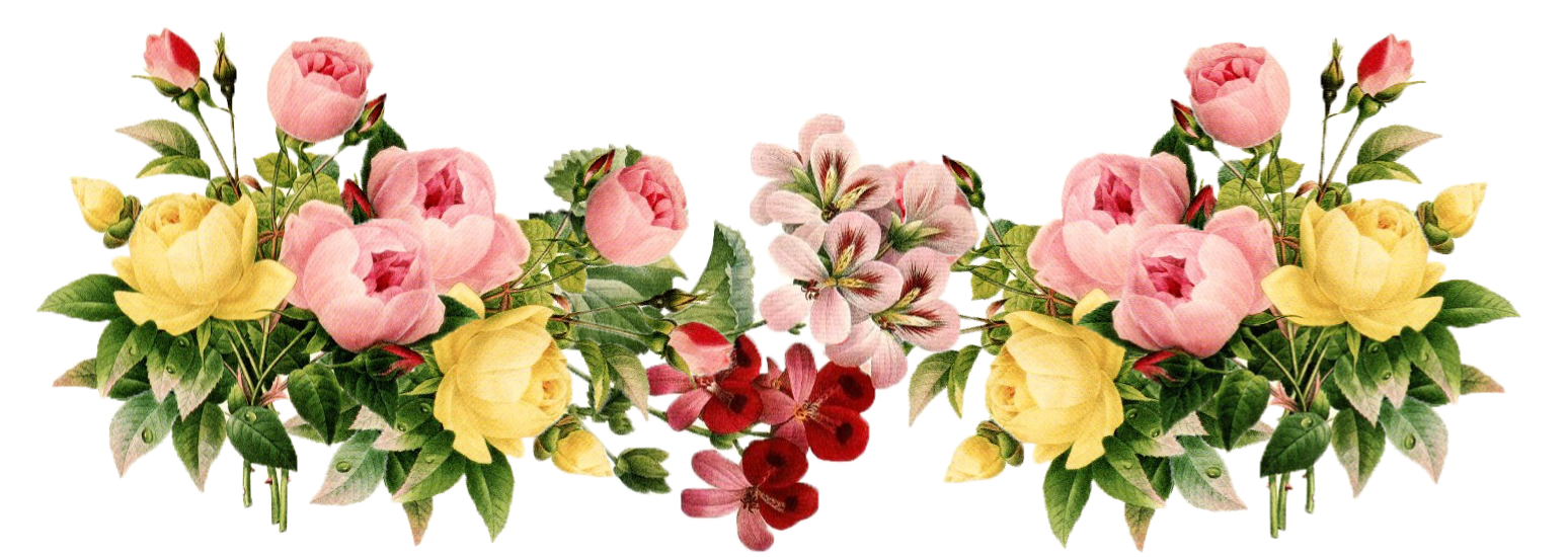 Floral clipart vintage flower.  collection of png