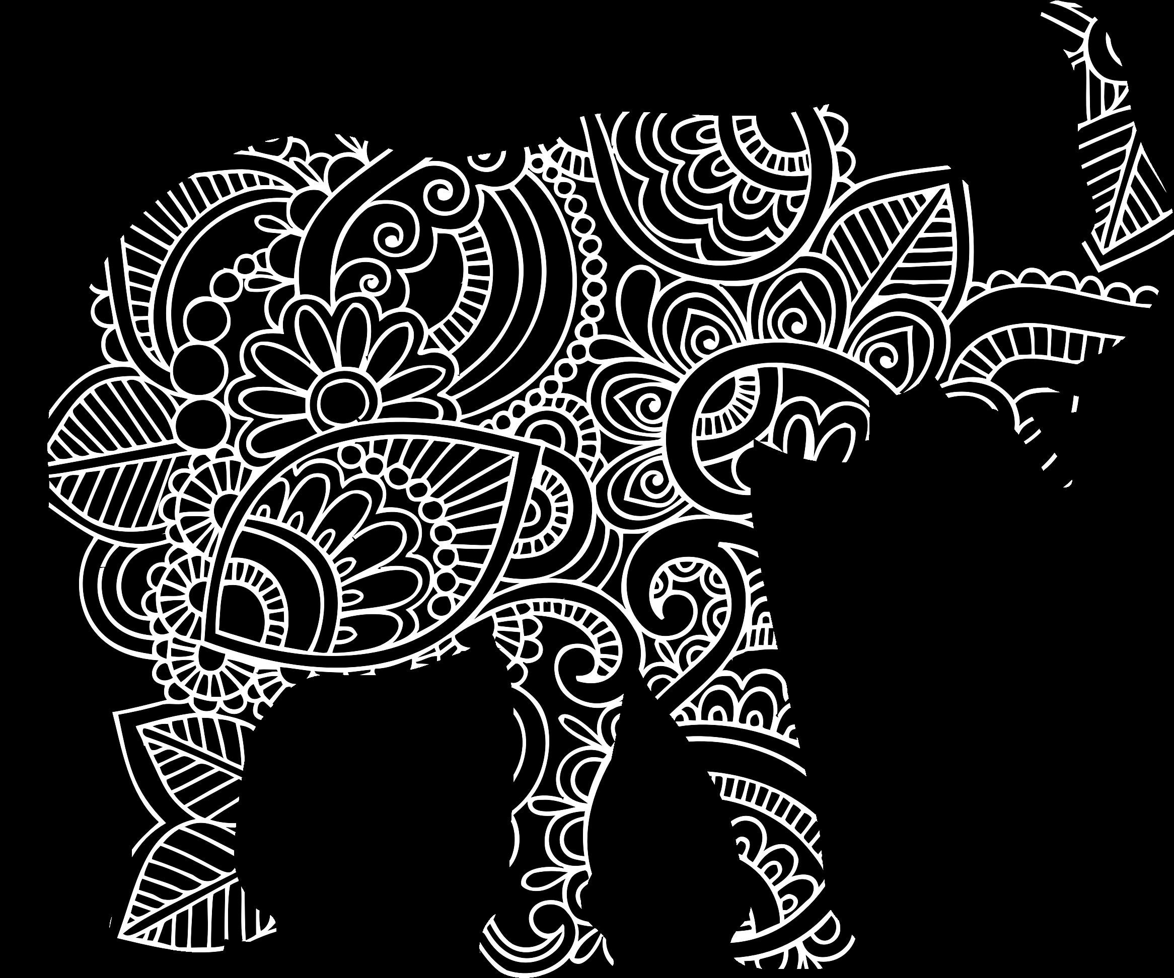 Elephant image png. Florida clipart big