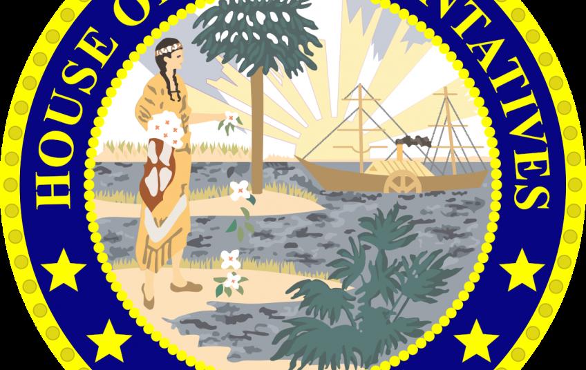 Cairflorida florida house of. Voting clipart representative government