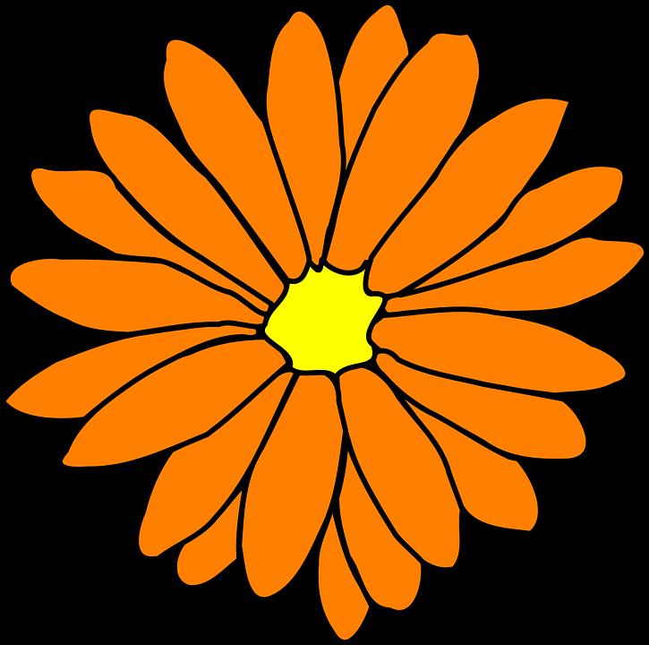 Florida clipart orange blossom. Free all things wartakita