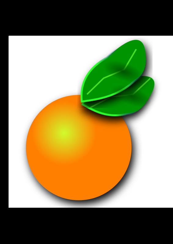 Orange citrus medium image. Florida clipart orenge
