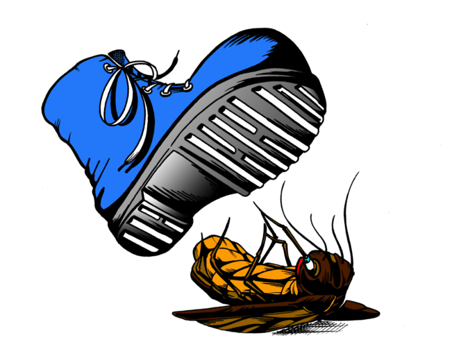 Florida clipart page. Squished pest control home