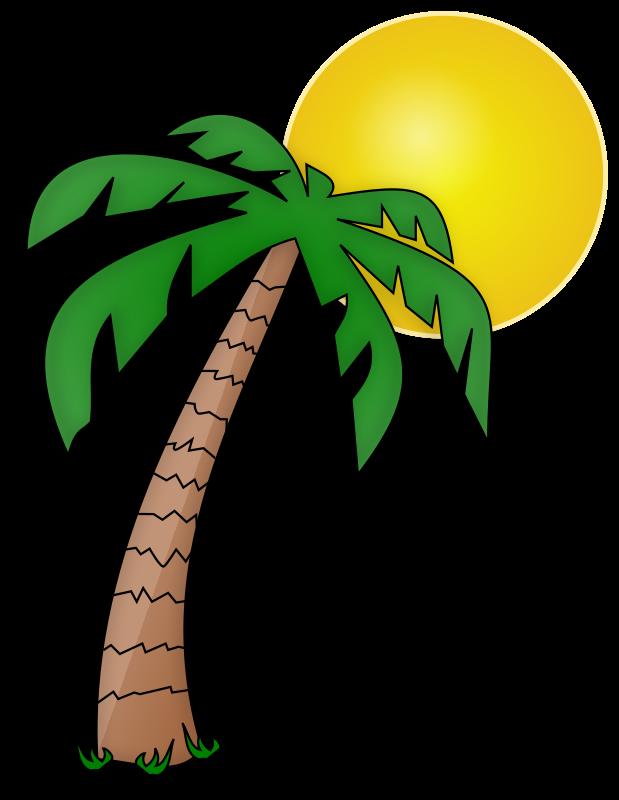 Florida clipart sun. Palmier et soleil medium