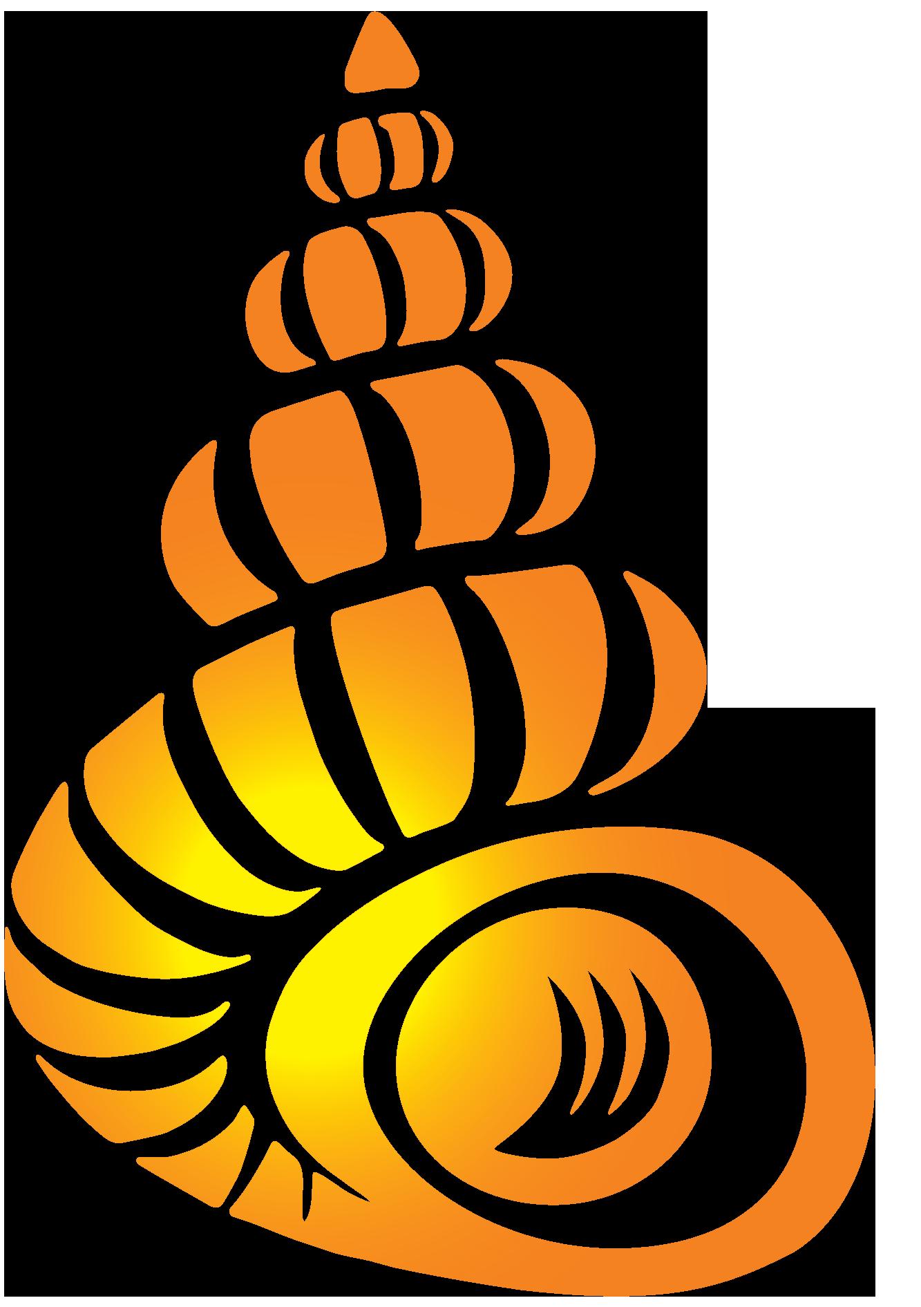 Bailey matthews national shell. Florida clipart vacation florida