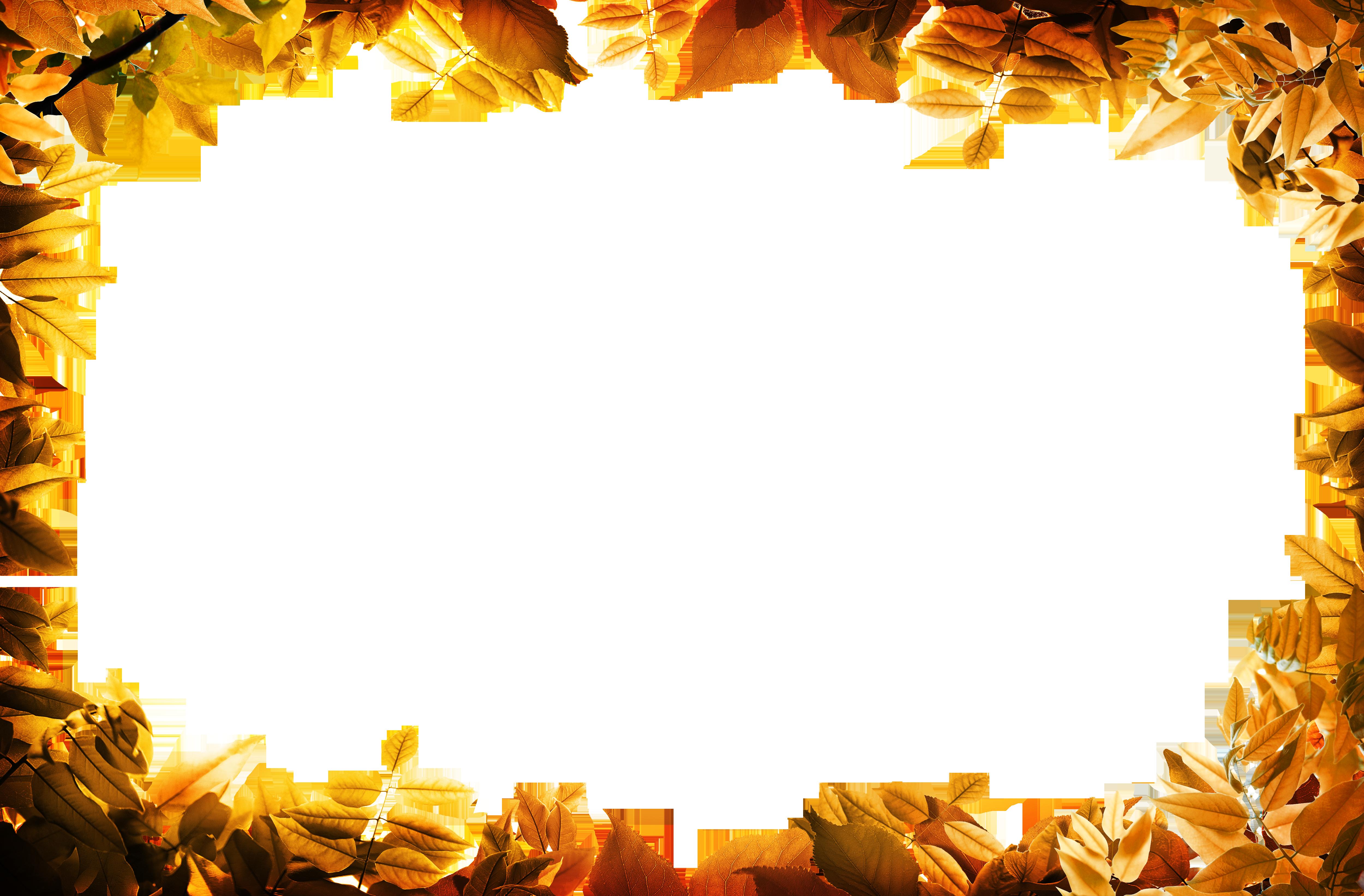 Film frame leaf clip. Autumn leaves border png