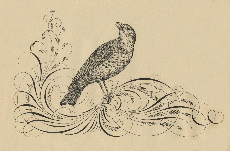 Flourish clipart calligraphic. Free antique clip art