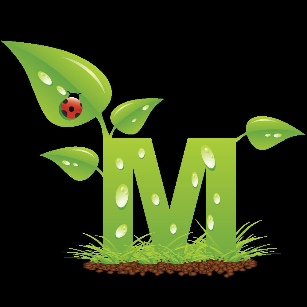 Alfabeto verde con mariquita. Flourish clipart fleurish
