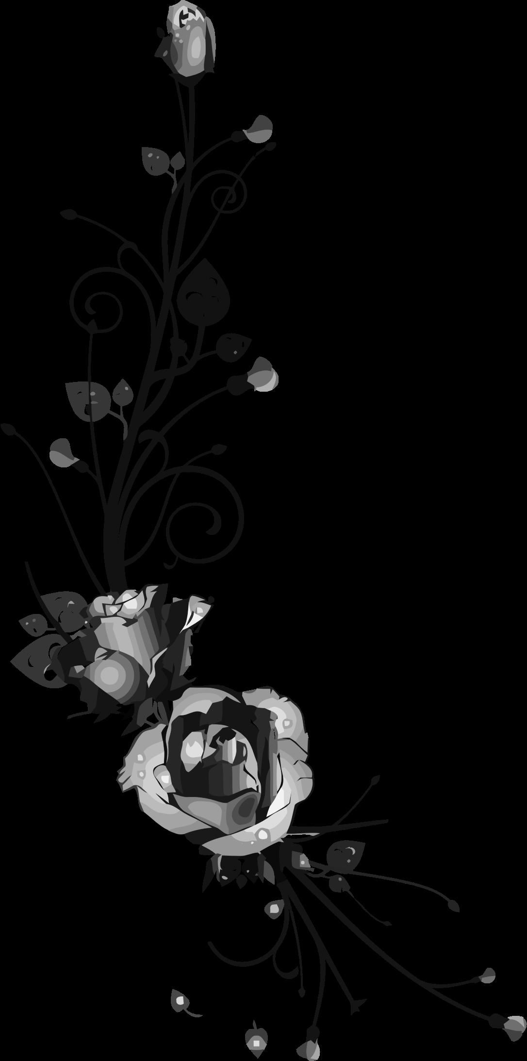 Rose floral big image. Flourish clipart flower