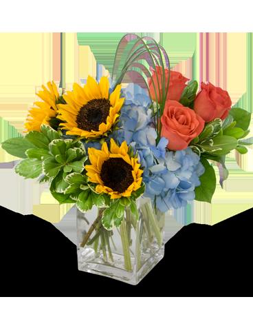 Flower arrangement png. Fun in the sun