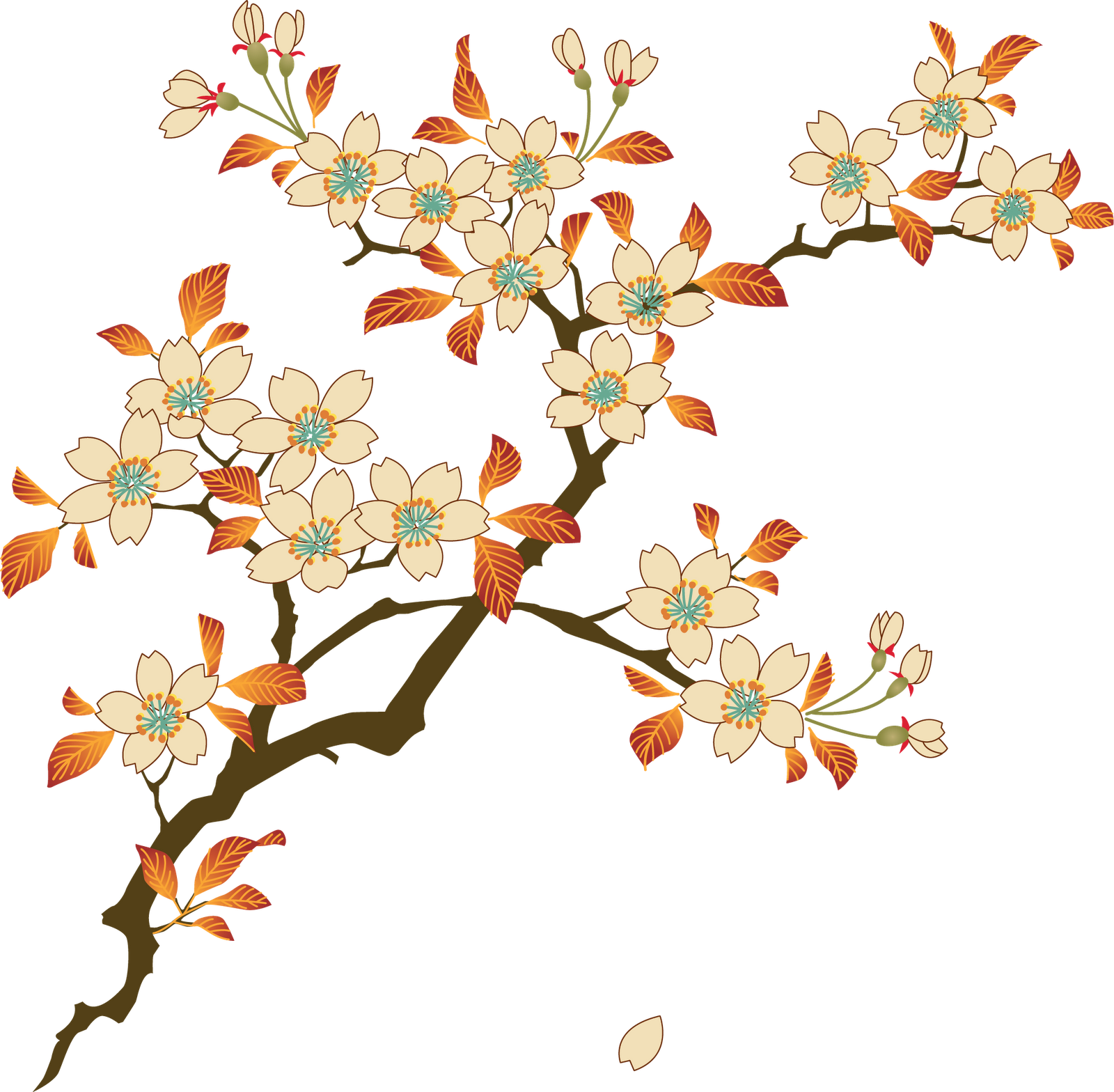 Flower art png.  floral for free
