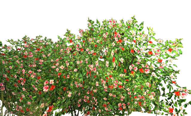 for free download. Flower bed png