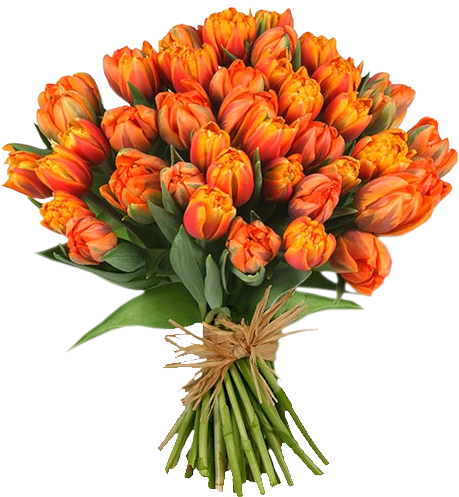 Flower bouquet png. Of flowers images free