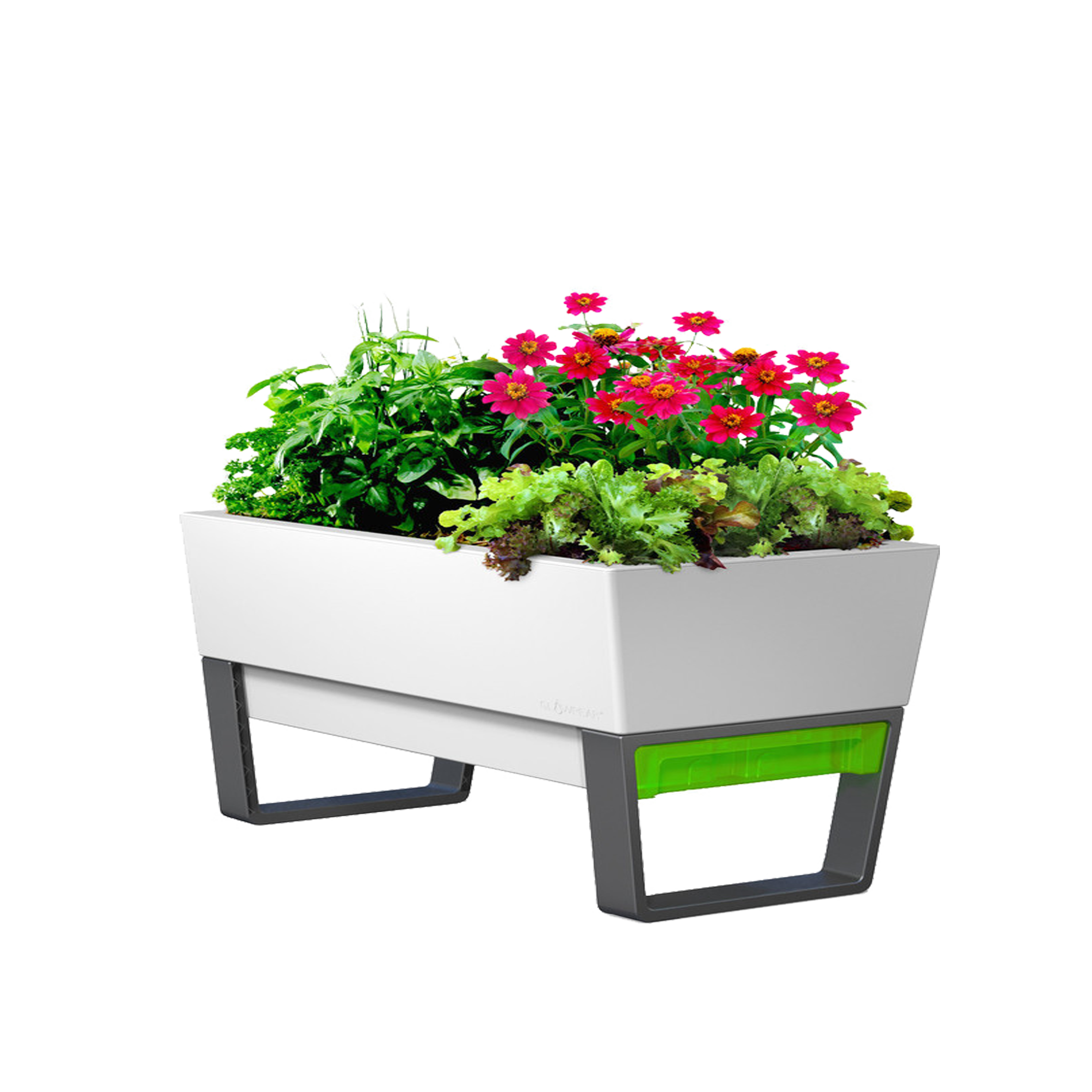Flower box png. Garden watering can planter
